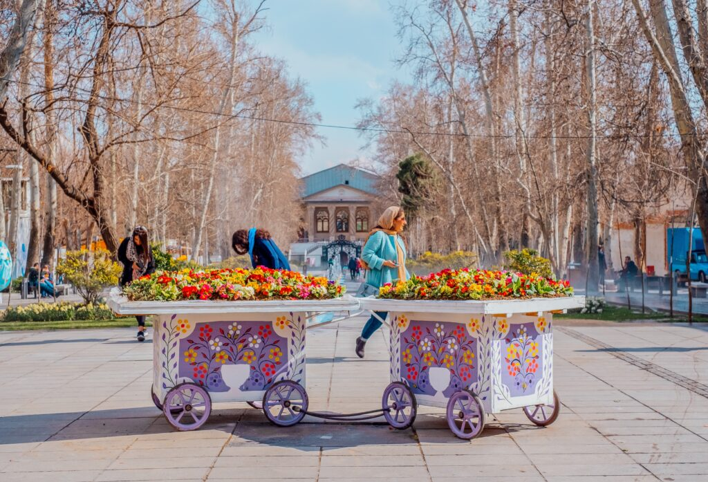 two white and purple flower carts in park